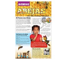 BEE AG MAG (SPANISH)