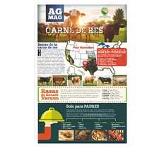 Beef Ag Mag (Spanish)