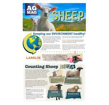 Sheep Ag Mag